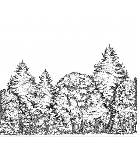 Forêt Folle